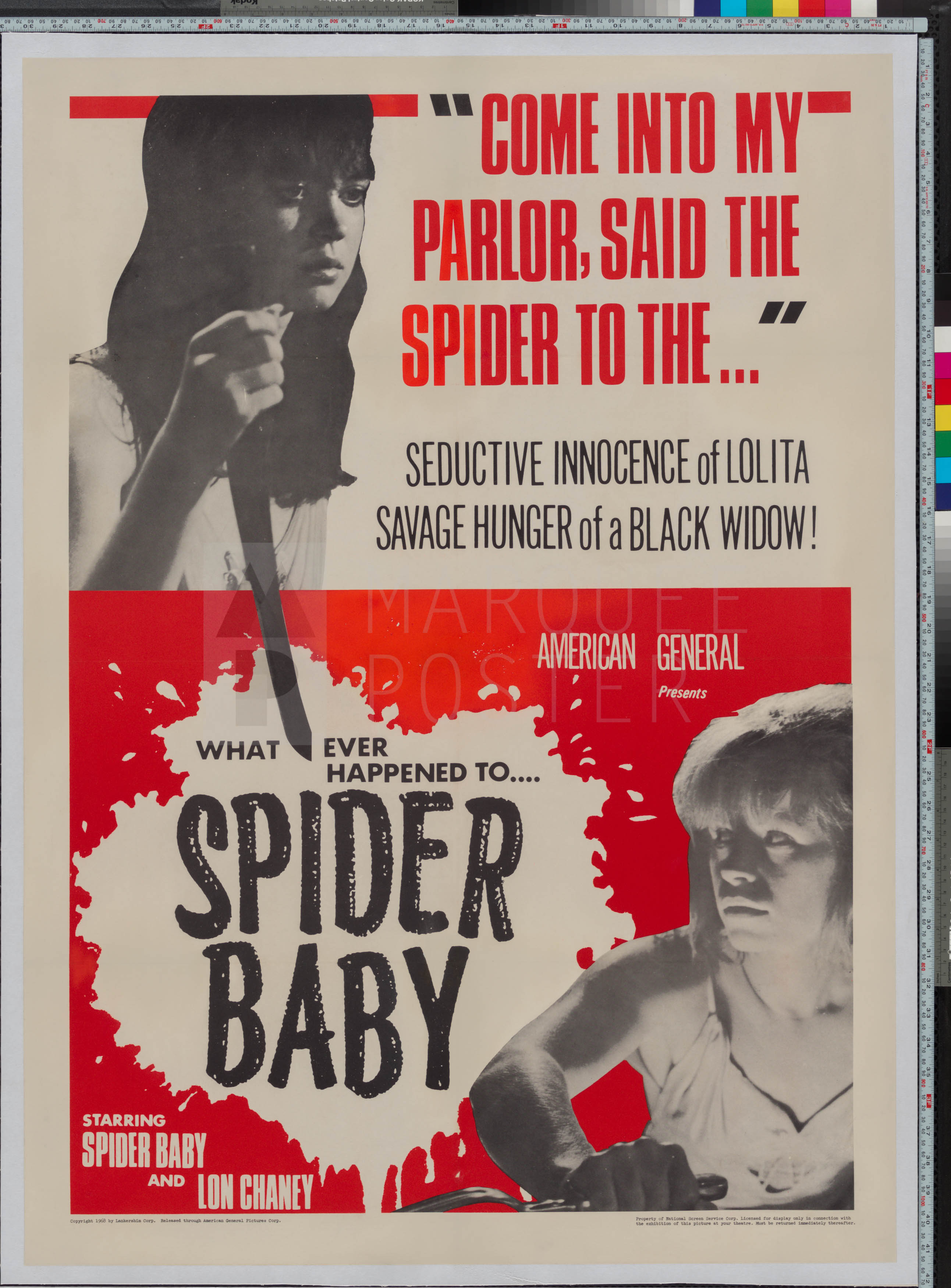19-spider-baby-or-the-maddest-story-ever-told-us-1-sheet-1967-02
