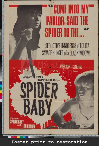 19-spider-baby-or-the-maddest-story-ever-told-us-1-sheet-1967-03