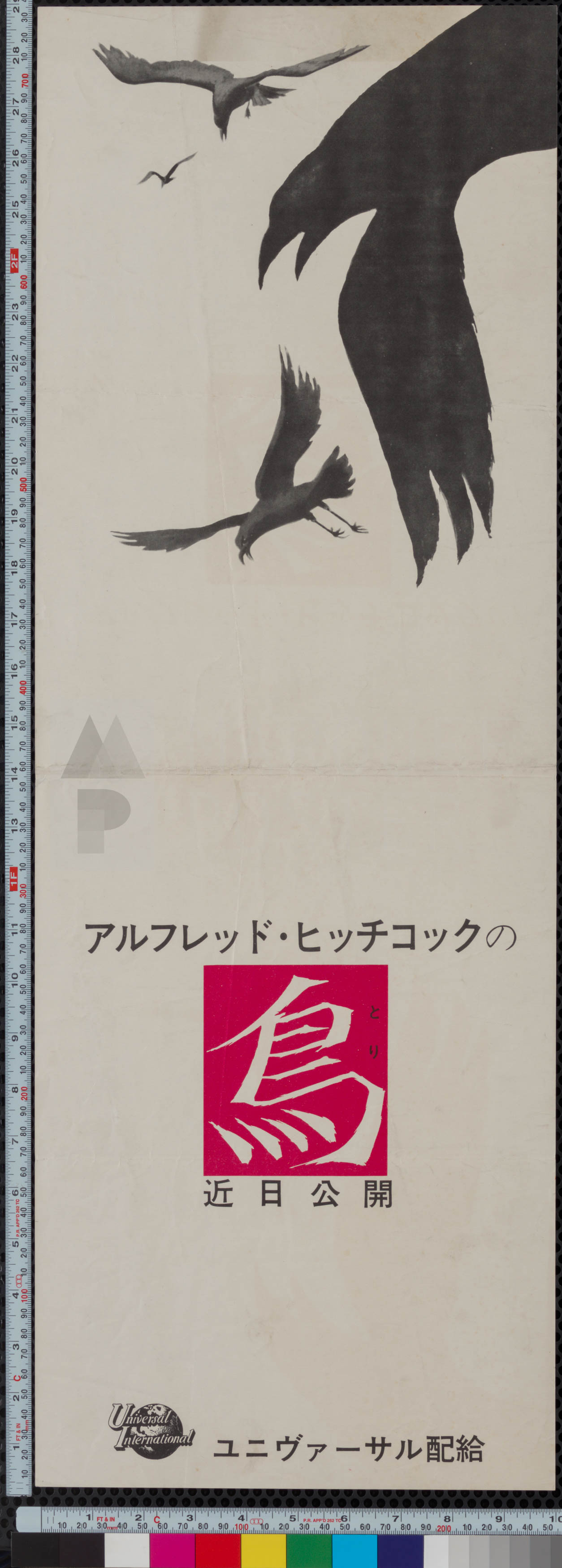 3-birds-japanese-speed-1963-02